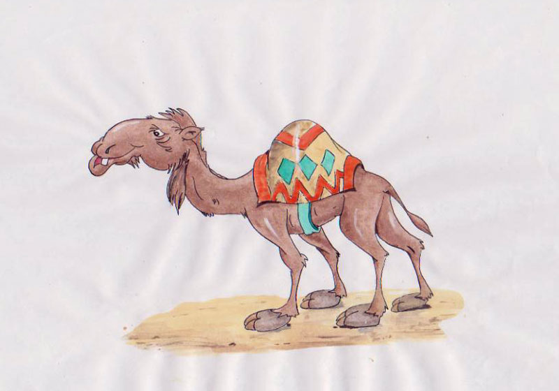 72-dpi-kamel-opa